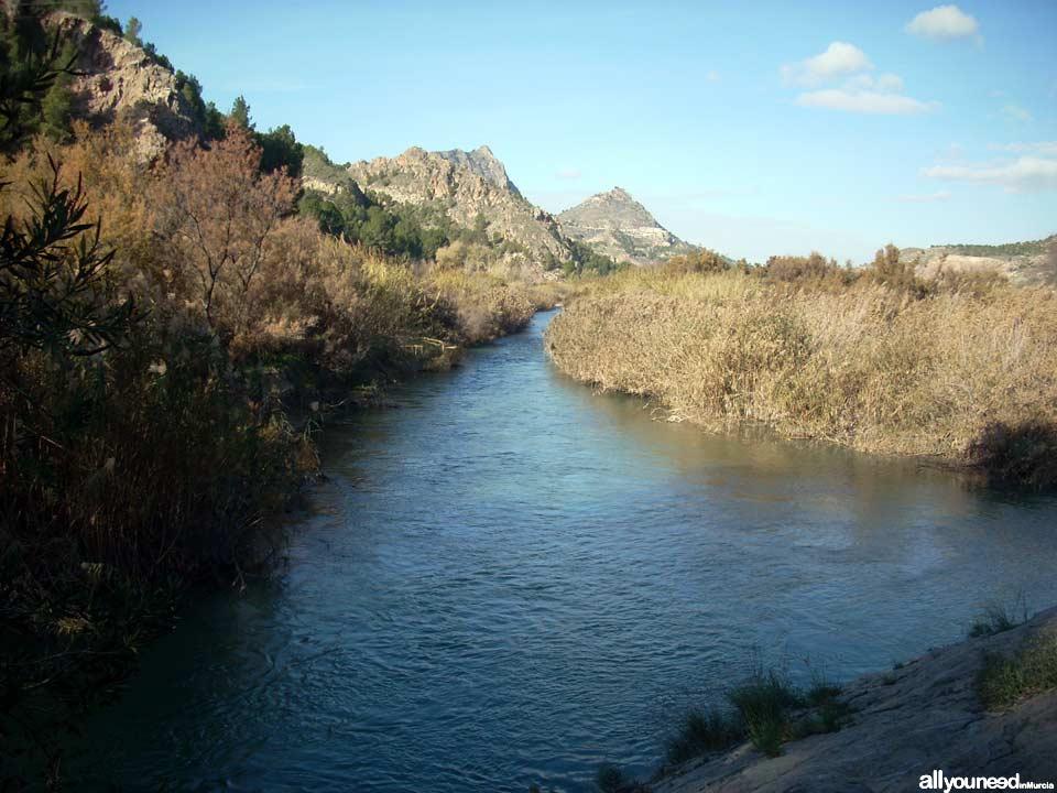 Waterwheel Route in Abarán, Murcia. Trail to the Hoya de D.García Waterwheel