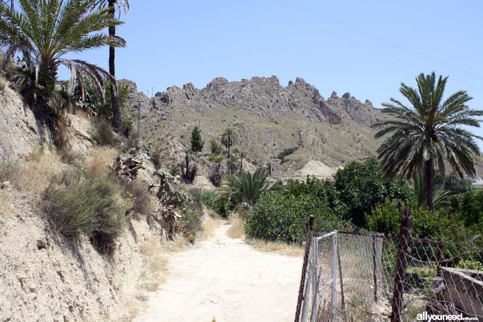 Ruta de las Norias en Abarán, Murcia. Sendero a Noria Félix Cayetano