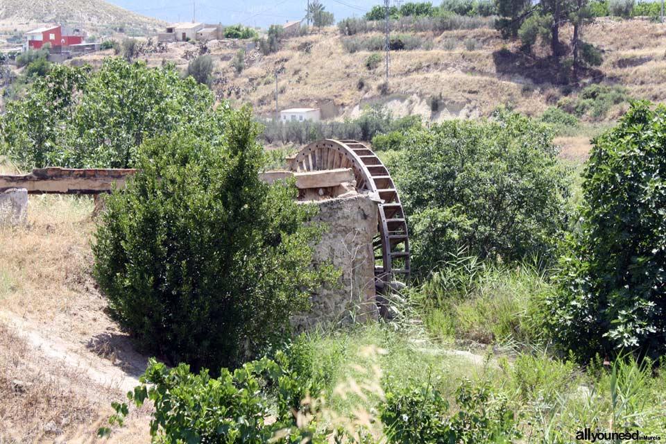 Waterwheel Route in Abarán, Murcia. Félix Cayetano Waterwheel