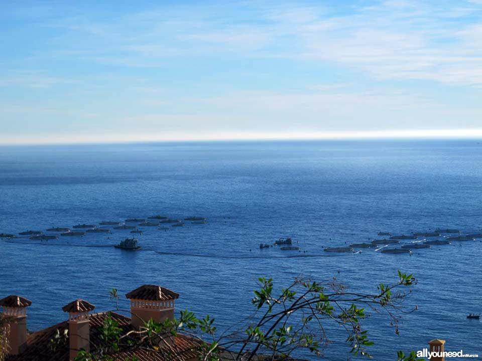 Panoramic Views of Águilas. Tuna Fish Farm