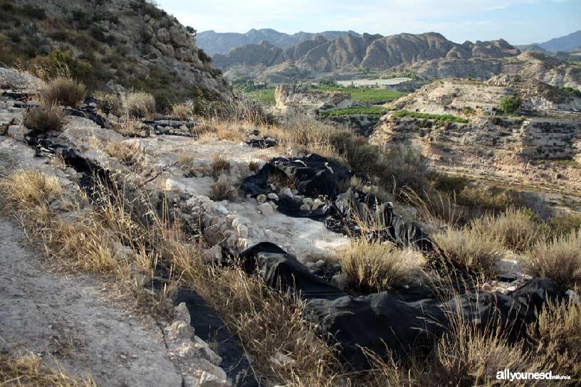 Cabezo del Tío Pío, poblado íbero. Yacimento