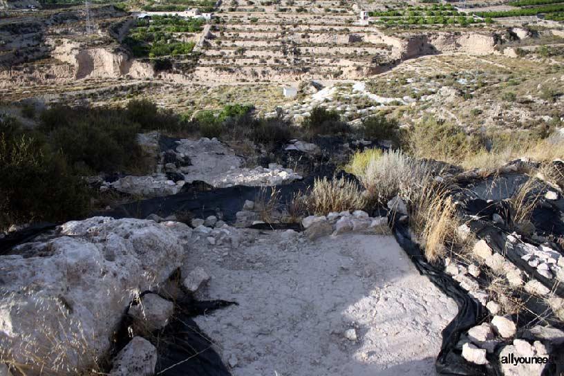 Cabezo del Tío Pío, poblado íbero. Yacimiento