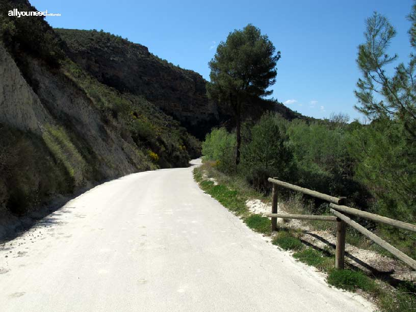 Groves and Forests of Cañaverosa Riverside
