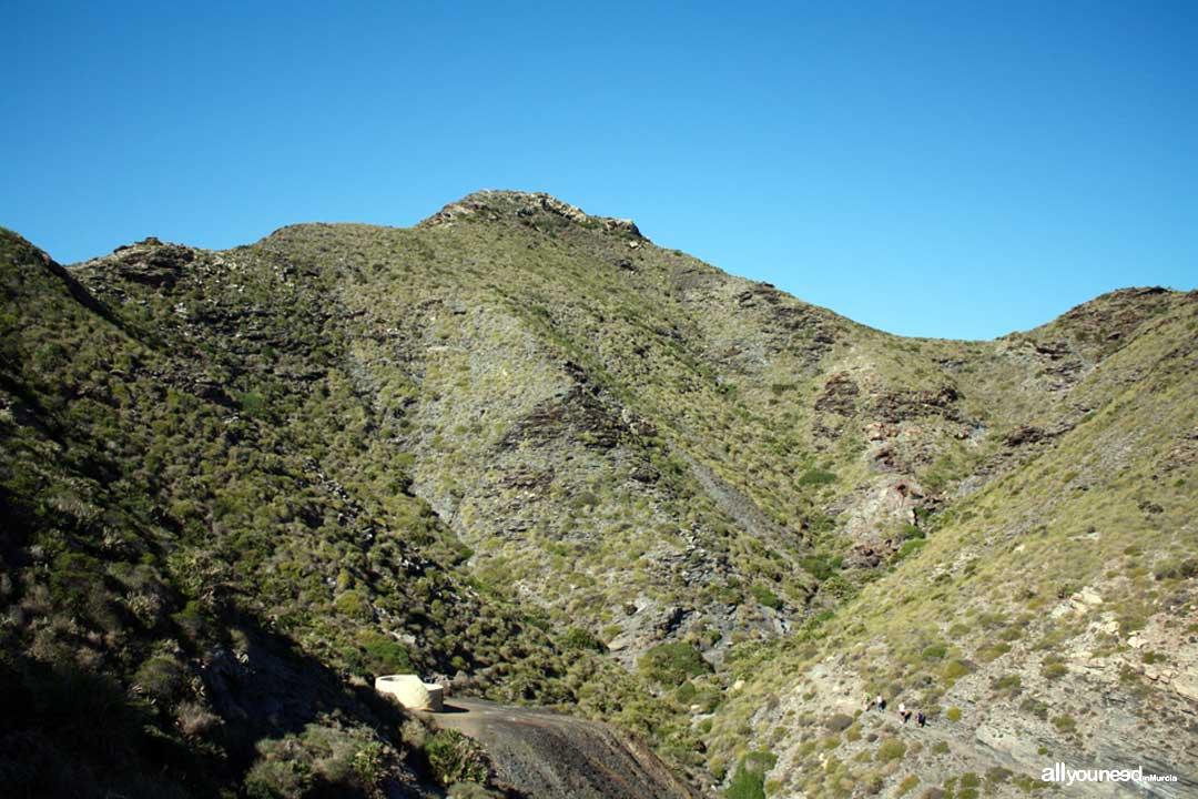 6- Sendero Cala Reona-Déntoles. El Atalayón. Calblanque