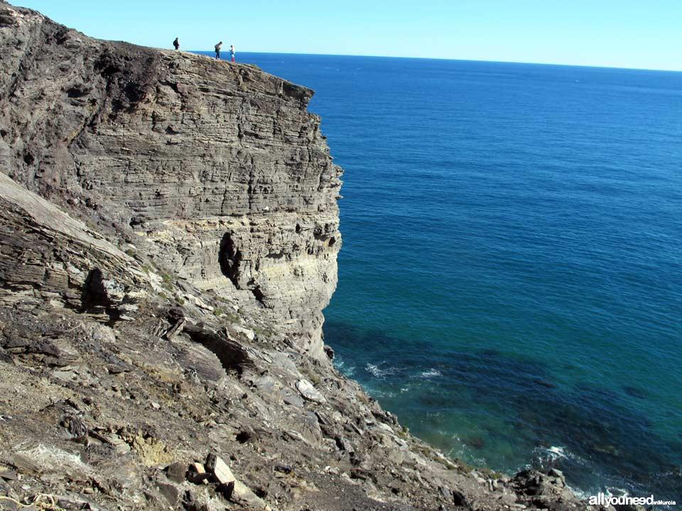 7- Sendero Cala Reona-Déntoles. Punta Barriga, precaución. Calblanque