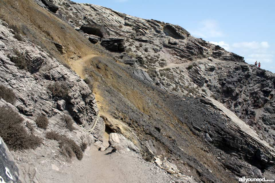 8- Sendero Cala Reona-Déntoles. Sendero tras Punta Barriga, precaución. Calblanque