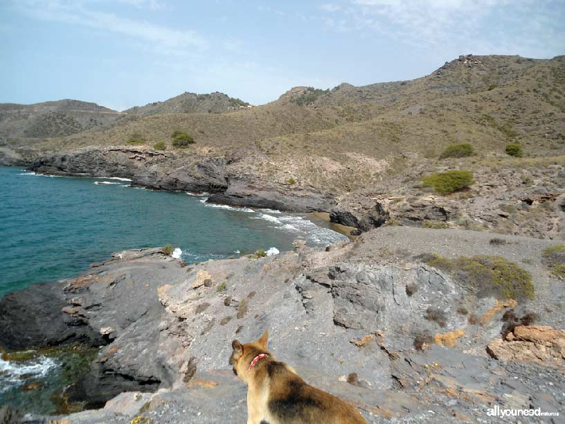 Mulas Cove in Calblanque