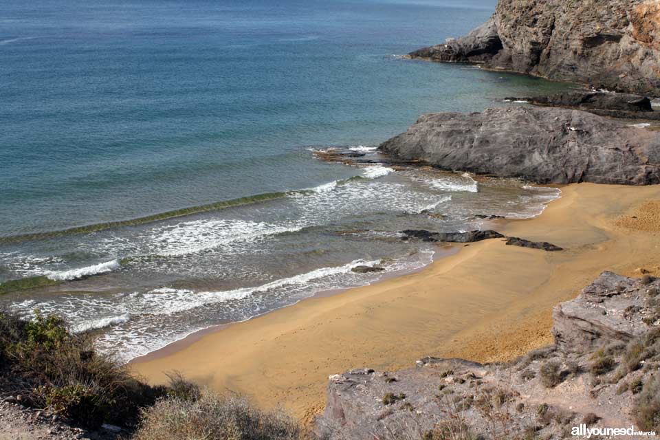 Beaches in Murcia. Parreño Beach in Calblanque