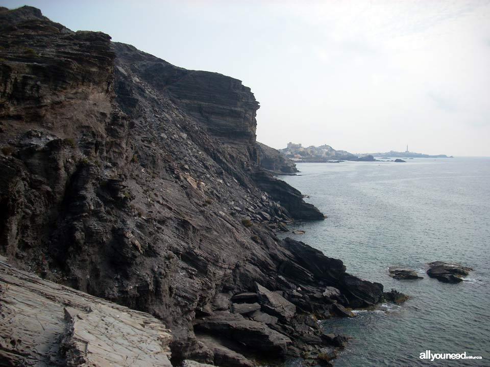 Punta Barriga en Calblanque. Cartagena