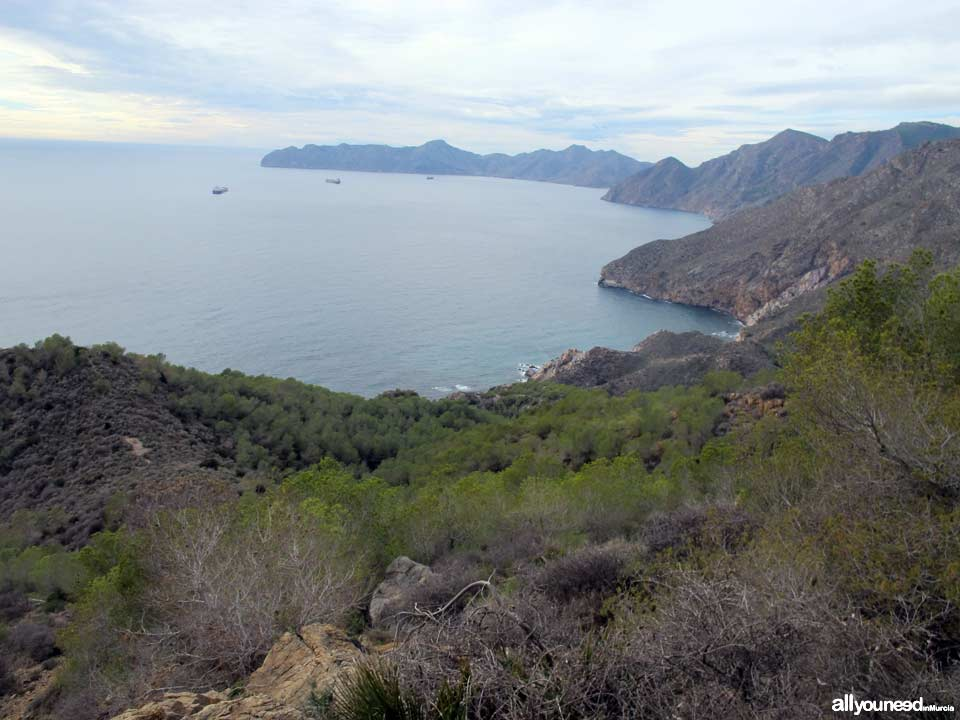 Panorámicas desde el Monte Roldán en Cartagena. Cabo Tiñoso