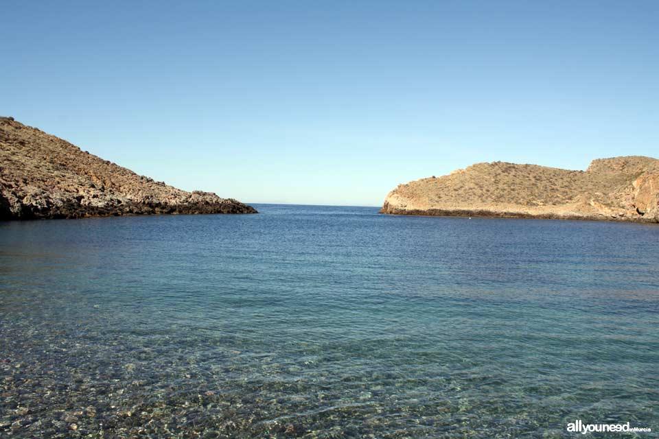 Cerrada Cove. Tiñoso Cape