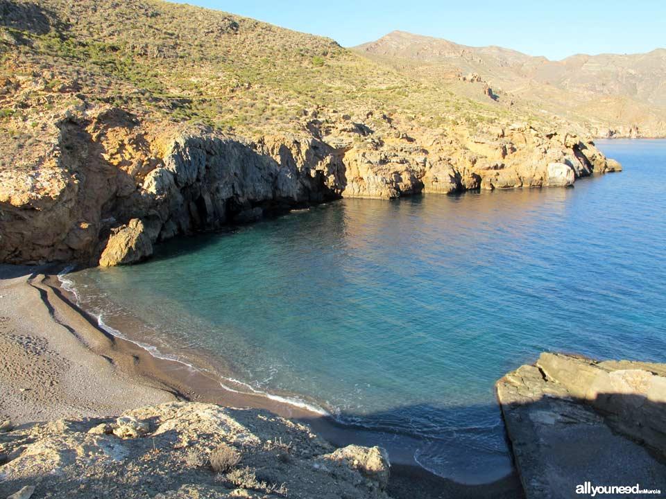Salitrona Cove. Tiñoso Cape