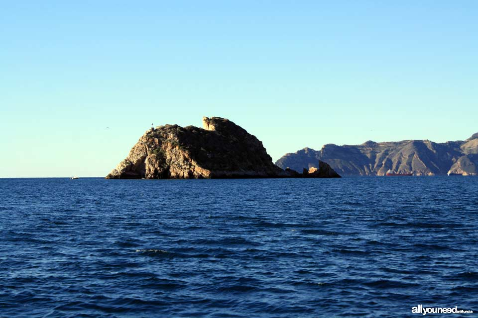 Las Palomas Island in Cartagena. Tiñoso Cape at the back