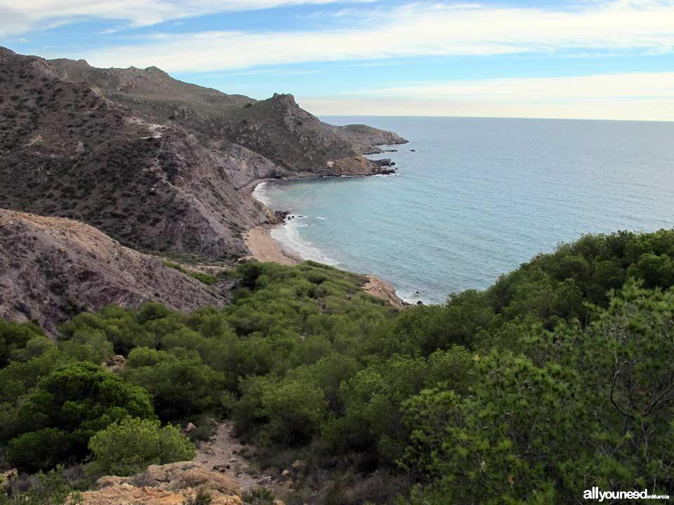 Playa de Fatares en Cartagena