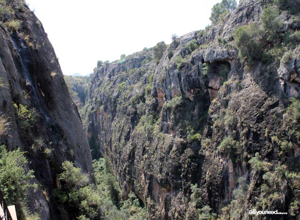Almadenes Canyon. Cieza. -Murcia-