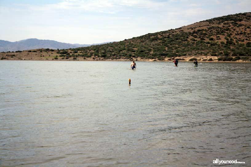 Isla del Ciervo en el Mar Menor. Sendero submarino