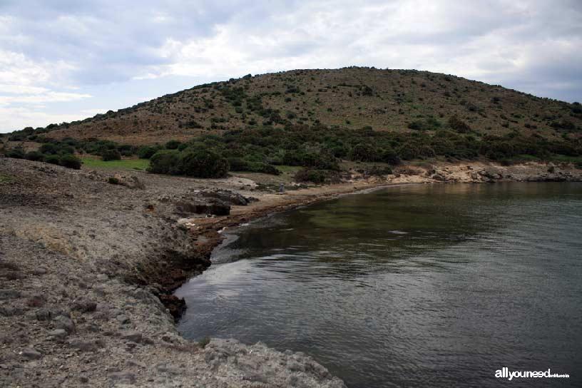 Isla del Ciervo en el Mar Menor. Playa
