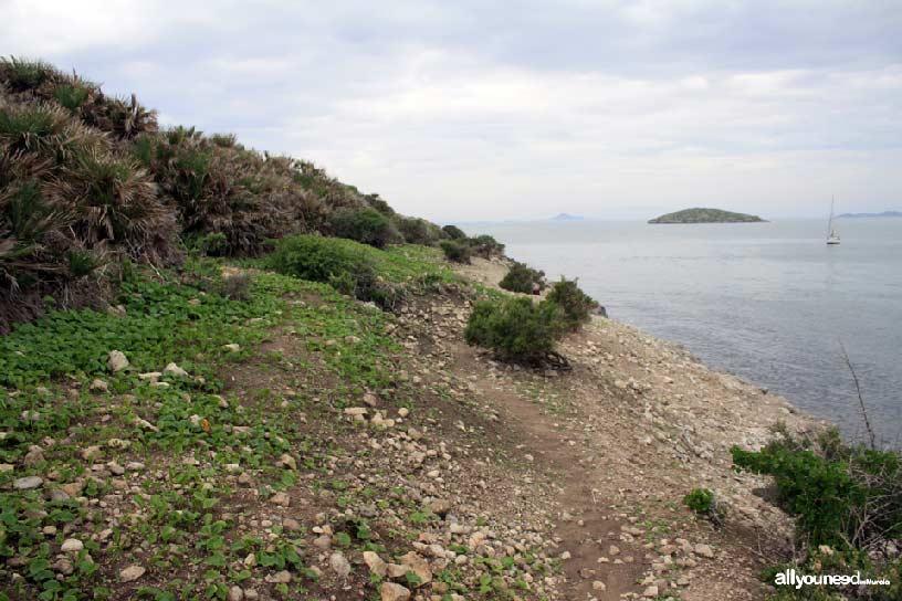 Isla del Ciervo en el Mar Menor. isla Rondella al fondo