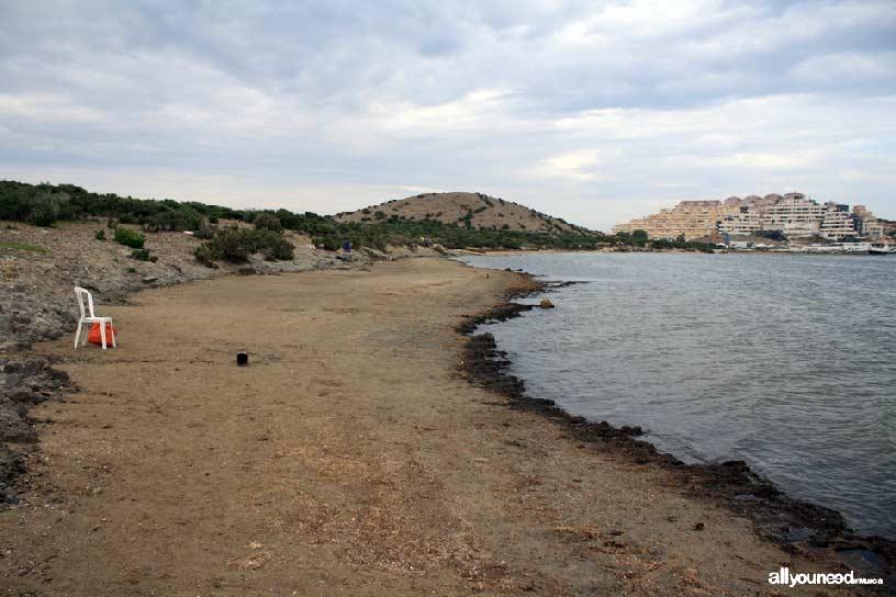 Isla del Ciervo en el Mar Menor. Playa de lodo