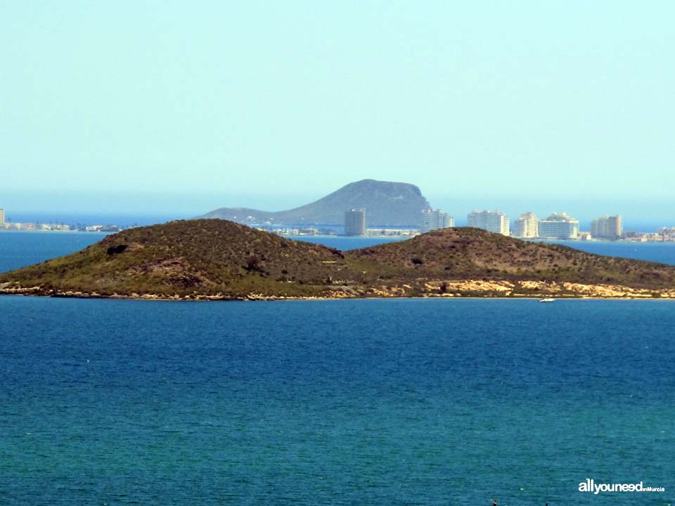 Perdiguera Island. Mar Menor Islands and Open Spaces