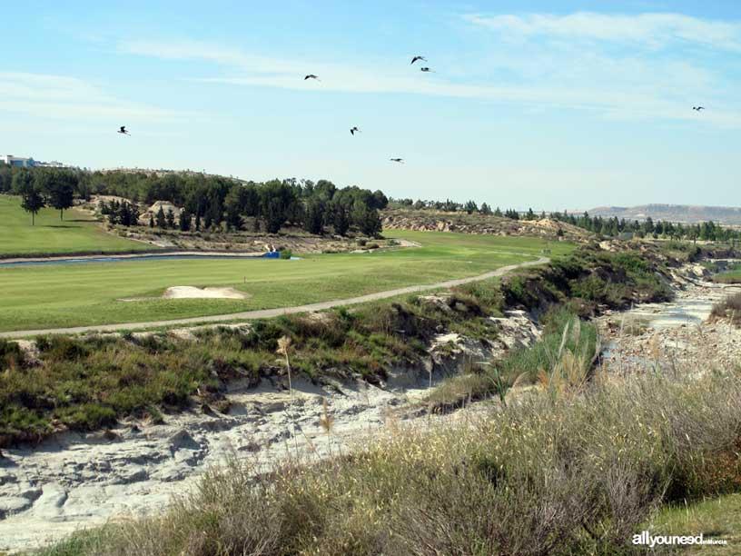 Termas del Saladillo en Mazarrón. Rambla y campo de golf