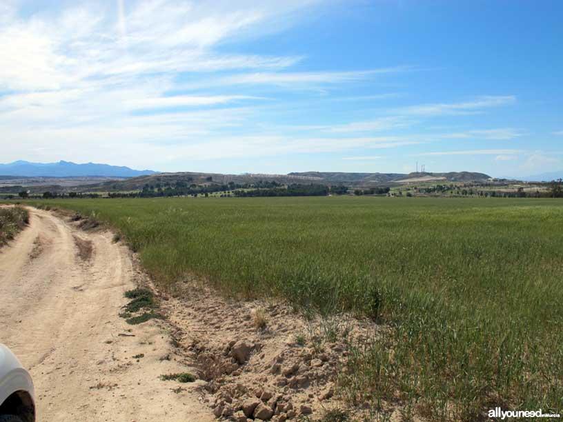 Termas del Saladillo en Mazarrón. Camino de acceso