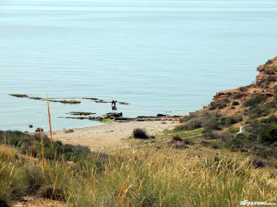 Beaches in Murcia. Leño Cove in Mazarrón