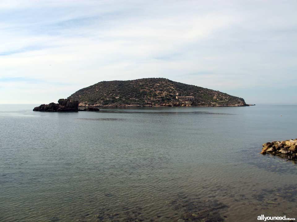Island beach. Beaches in Mazarrón.
