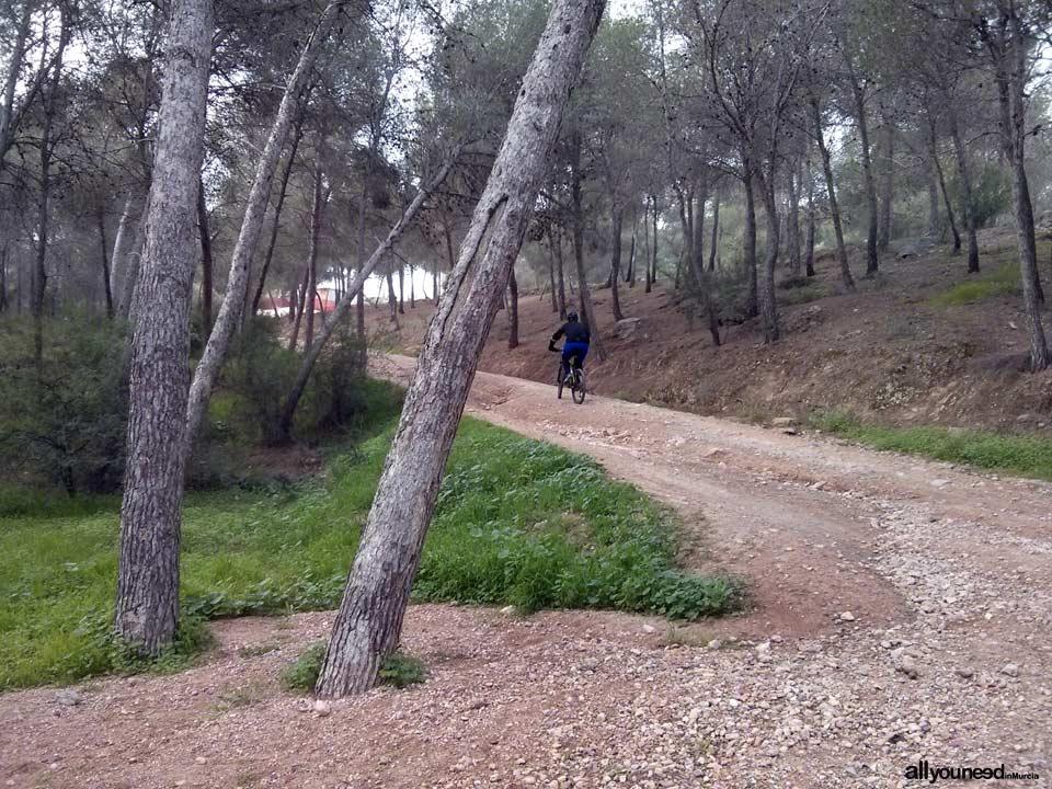 Sendero Cultural de El Valle. SL-MU7. Camino de Santa Catalina