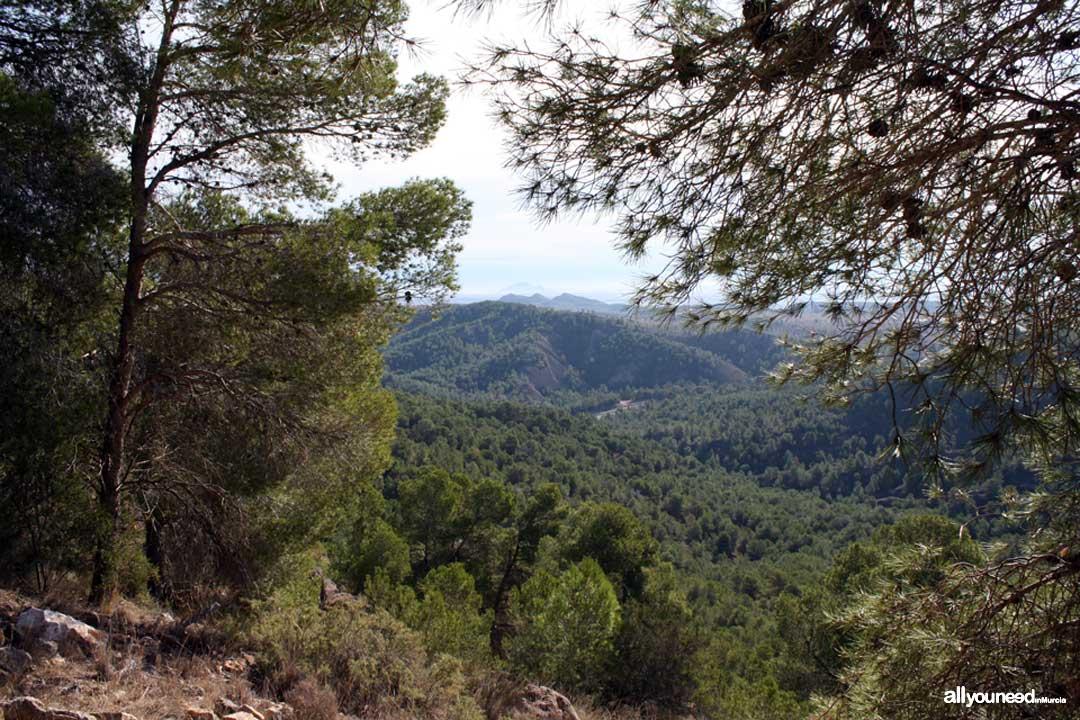 Panorámicas de Murcia. Vistas desde el castillo de la Asomada