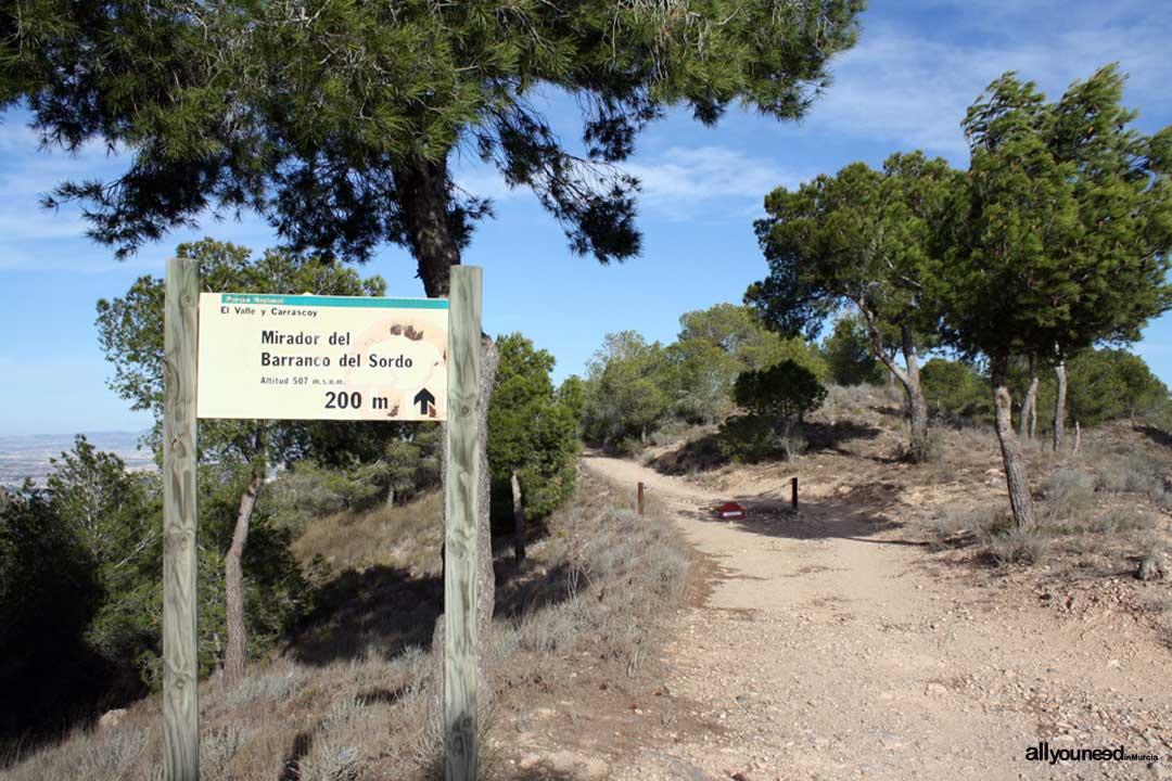 Panorámicas de Murcia. Mirador Barranco del Sordo