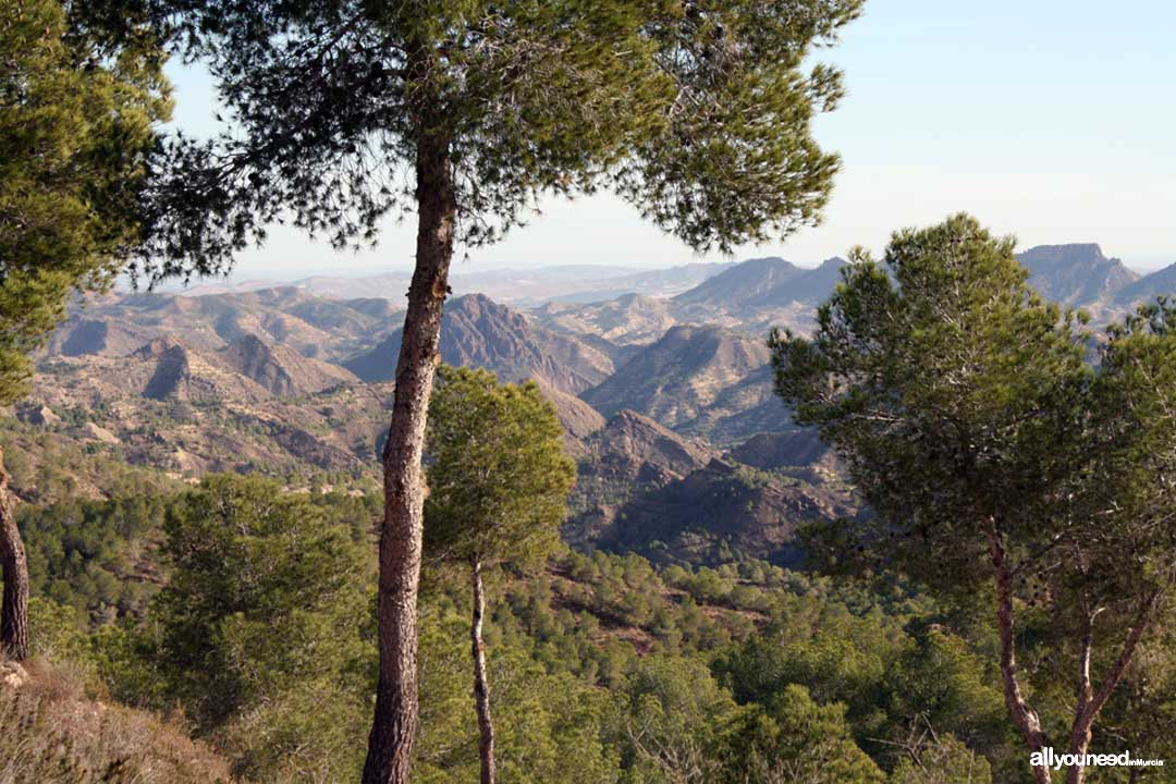 Barranco del Sordo Viewpoint