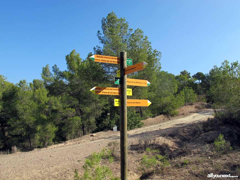 Majal Blanco Tourist Information Point. Pathway. El Valle y Carrascoy Regional Park