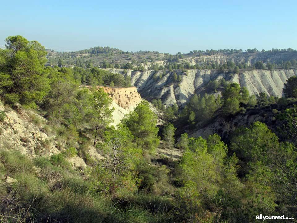 Ruta Barranco Blanco PR-MU52. Majal Blanco.Senderismo en Murcia
