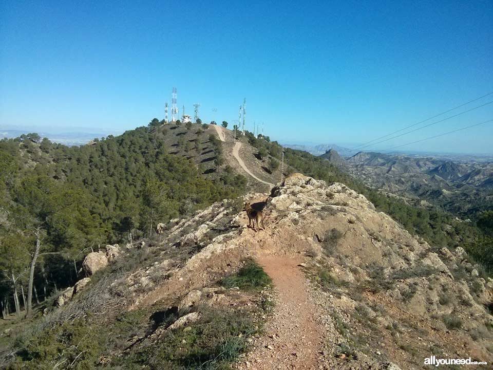 Route from Venta los civiles to Pico del Relojero. Section of trail PR-MU23