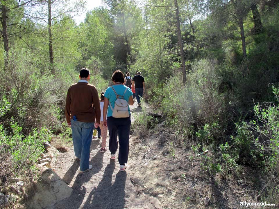 Trail of familia Alcalde Miguel Ángel Cámara. SL-MU15