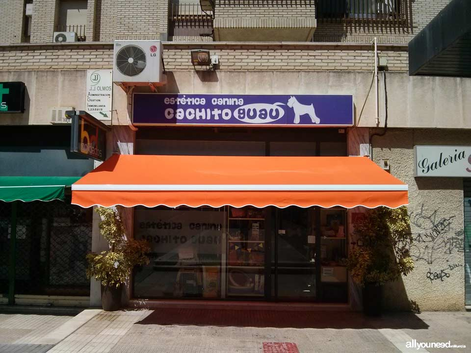 Cachito Guau. Dog Grooming Saloon in Murcia