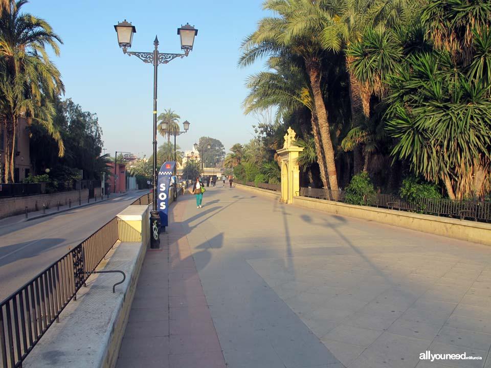 Paseo del Malecón en Murcia