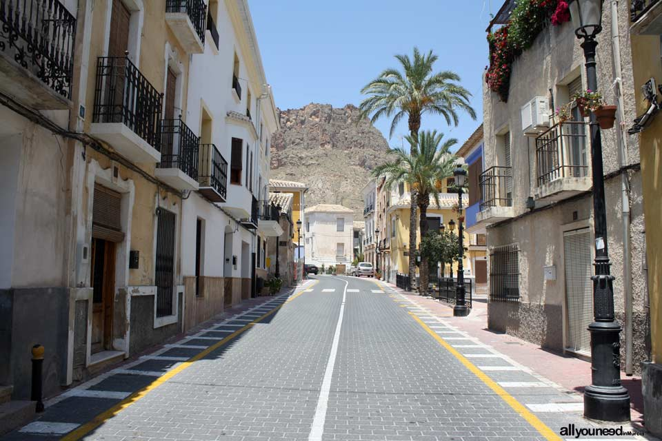 Mayor street in Ojós