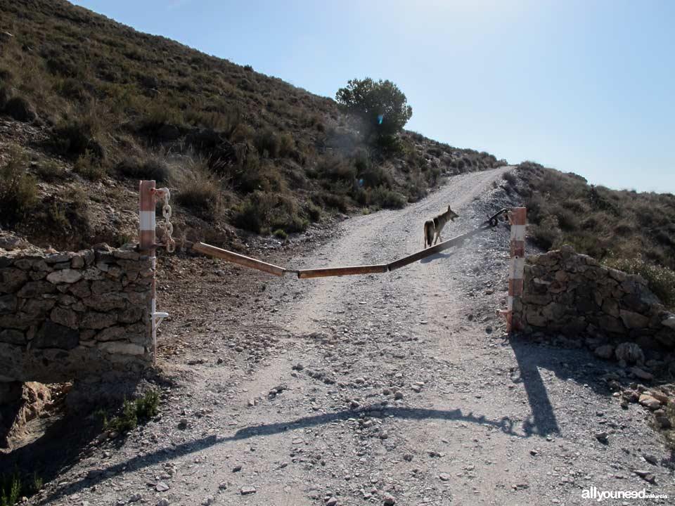Ruta Calas el Bolete Grande, Boletes y Aguilar. Comienzo Ruta