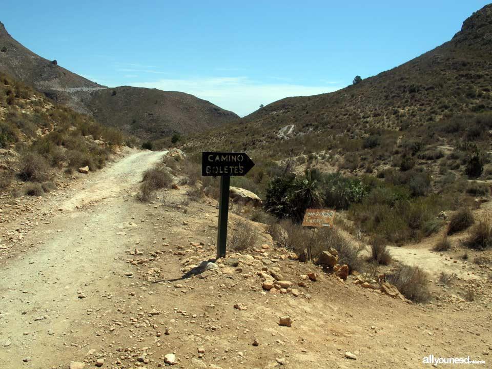 Ruta Calas el Bolete Grande, Boletes y Aguilar. Sendero a Bolete Grande