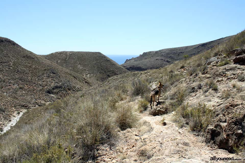 Ruta Calas el Bolete Grande, Boletes y Aguilar. Hacia el Bolete Grande