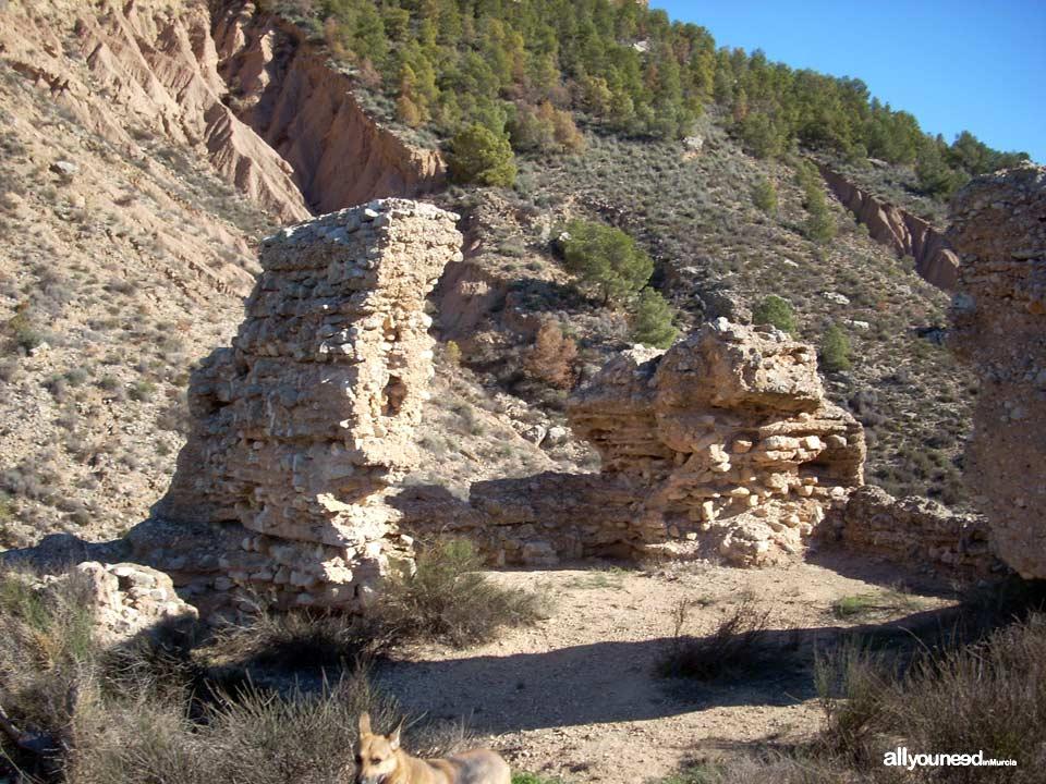 Guide of Castles in Murcia. Las Paleras Castle in Pliego
