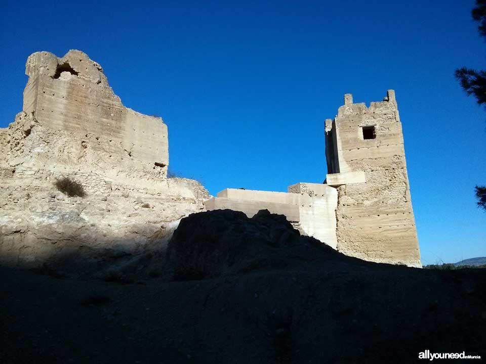 Guide of Castles in Murcia. Pliego Castle. Spain
