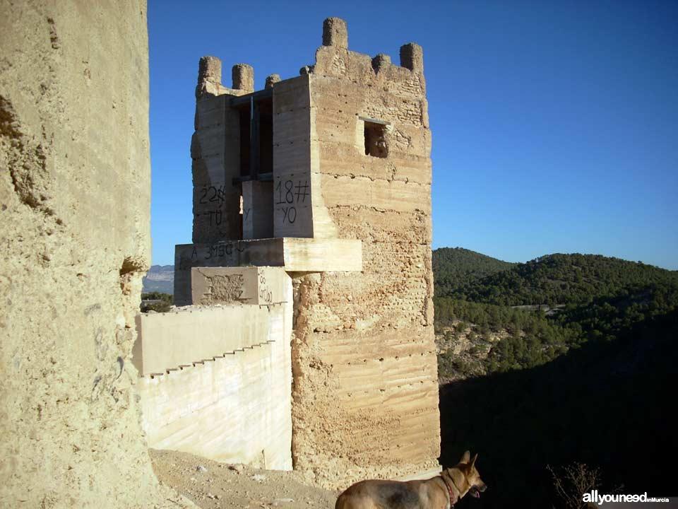 Pliego Castle