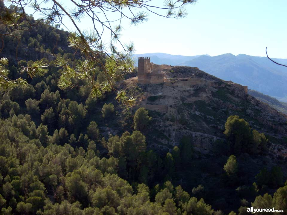 Castle of Paleras and Muela Trail, SL-MU6 in Pliego