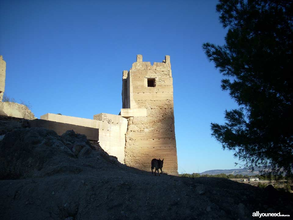 Pliego Castle and Cairel Route. PR-MU77. The Castle