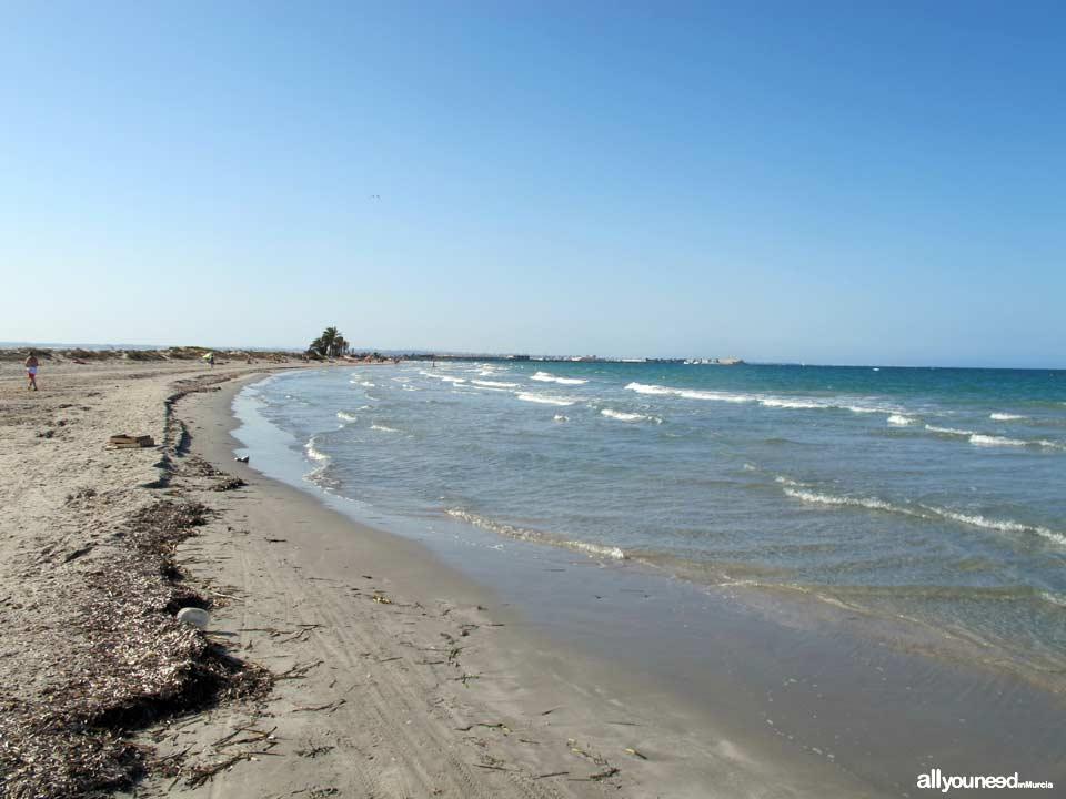 Playa de la Barraca Quemada. Playas de San Pedro del Pinatar