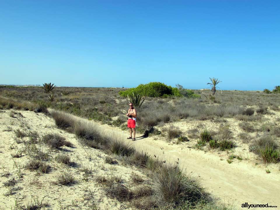 Torre Derribada Beach