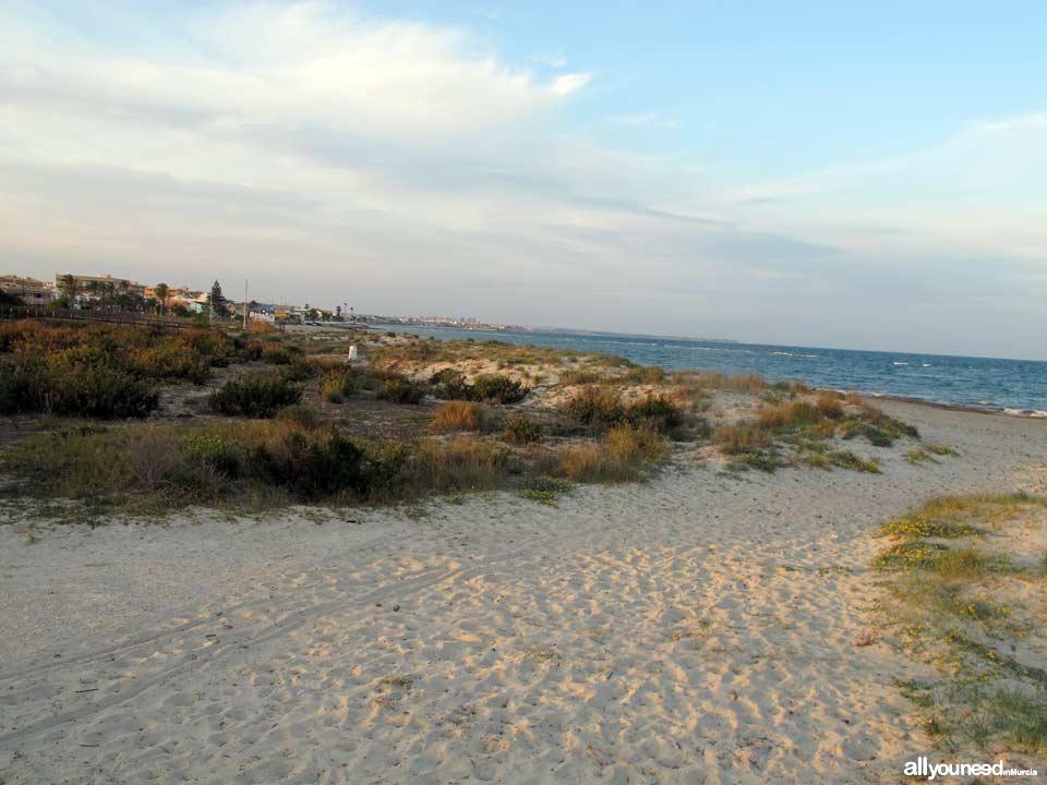Playa del Mojón. Playas de San Pedro del Pinatar